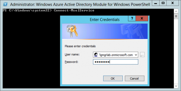 Logon to the Windows Azure Active Directory